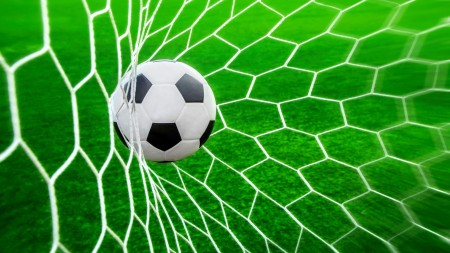 sport_ball_and_net_for_football_080422_1
